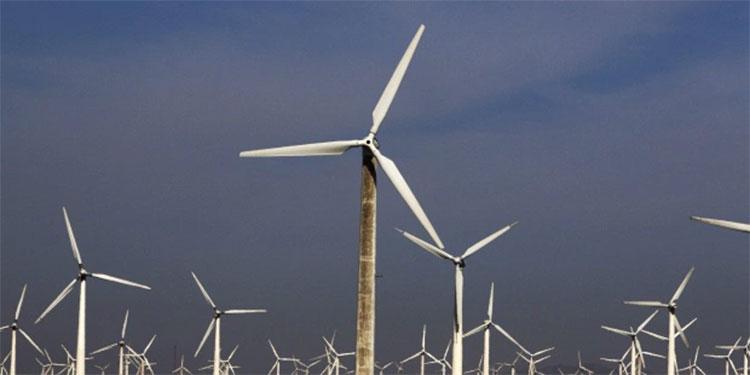 Factor de producción (capacidad eólica)