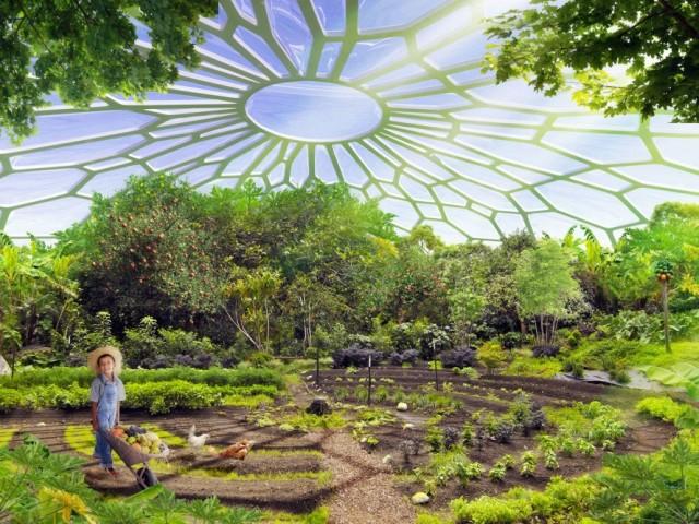 Agricultura sostenible